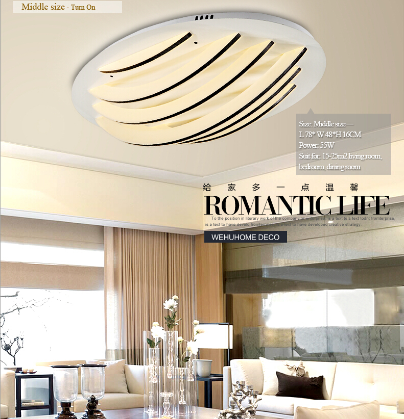 Brief Special Master Bedroom Ceiling Light 24w Living Room Ceiling Lamp For Bedroom Dining Room