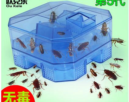 Fifth generation the cockroach trap cockroach house household traps all nest box out the cockroach powder(China (Mainland))