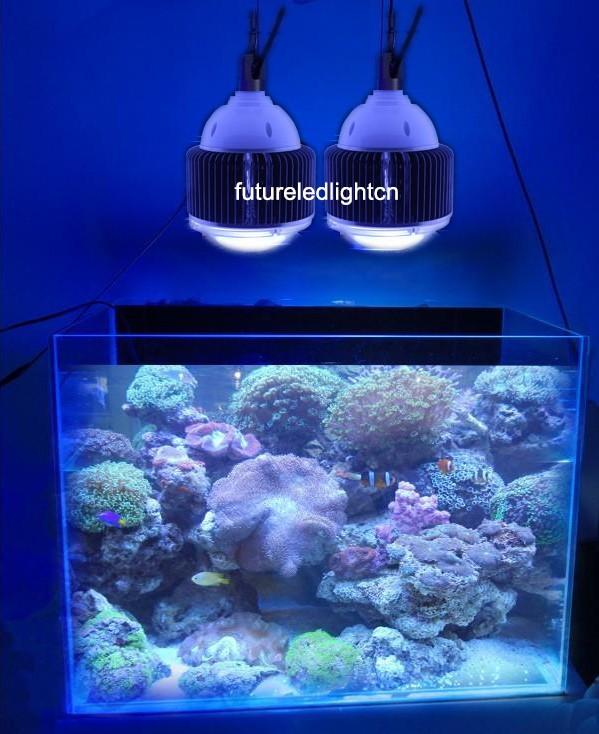 Светодиоды в аквариуме 2017