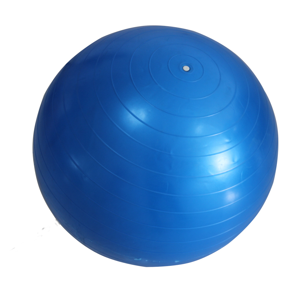 2015 Hot Selling High Quality Home Balance Trainer Yoga Pilates Fitness GYM Exercise Ball with Pump Shipping By CPAM(China (Mainland))