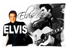 Elvis Presley Pillow Case Two-sided Pillow