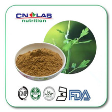 hot selling 2.5% Triterpene Glycosides 500g from Black Cohosh Extract worldwide fast delivery(China (Mainland))