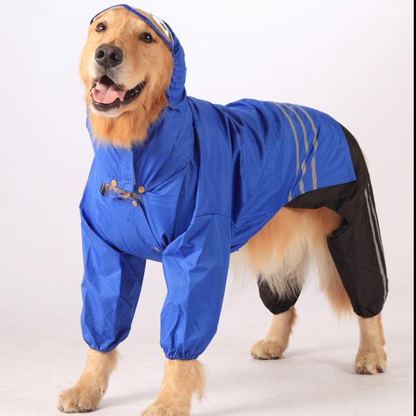 Best Winter Dog Bed For Husky