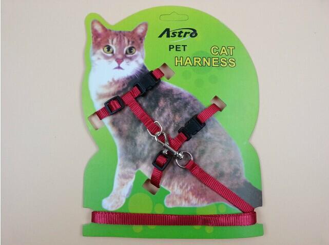 Поводок для кошки мастер класс