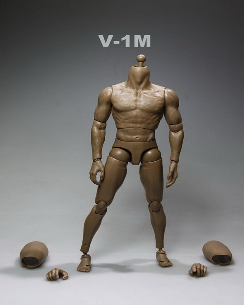 1/6 Scale Nude Muscular Male Body Action Figure Hot Toys V1-M Without Head Sculpt(China (Mainland))