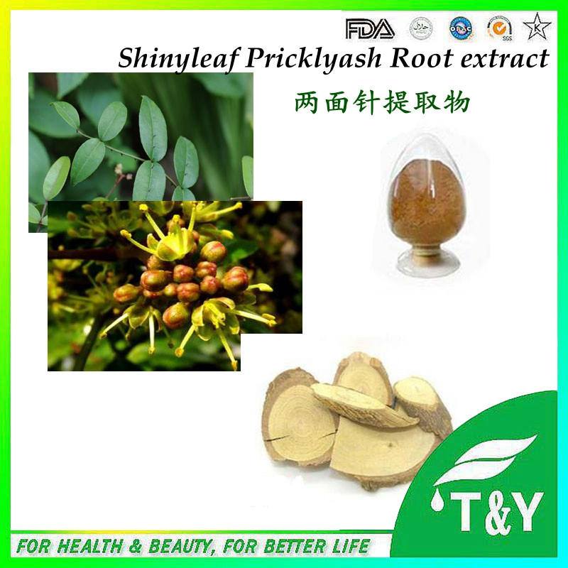 BV certificated GMP factory supply Shinyleaf Pricklyash Root 600g/lot free shipping<br><br>Aliexpress
