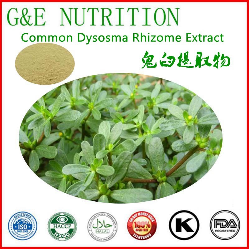 hot selling Common Dysosma Rhizome Extract 800g<br><br>Aliexpress