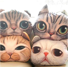 37cm*29cm Cartoon Simulation 3D Cat  Nap Pillow Cushion and Pillow Washable Car Waist Pillow Free S shipping(China (Mainland))