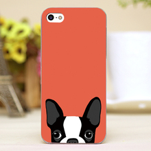 Boston Terrier-5 Design Customized transparent case cover cell mobile phone cases for Apple iphone 4 4s 5 5c 5s hard shell