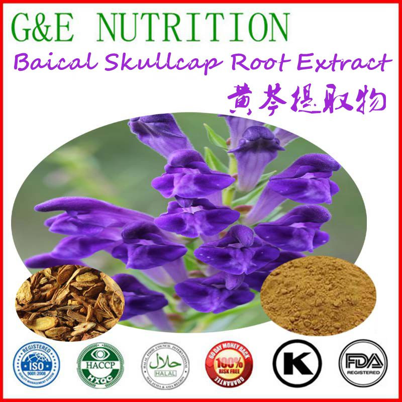 Top Quality Supplier Baical Skullcap Root Extract 400g<br><br>Aliexpress