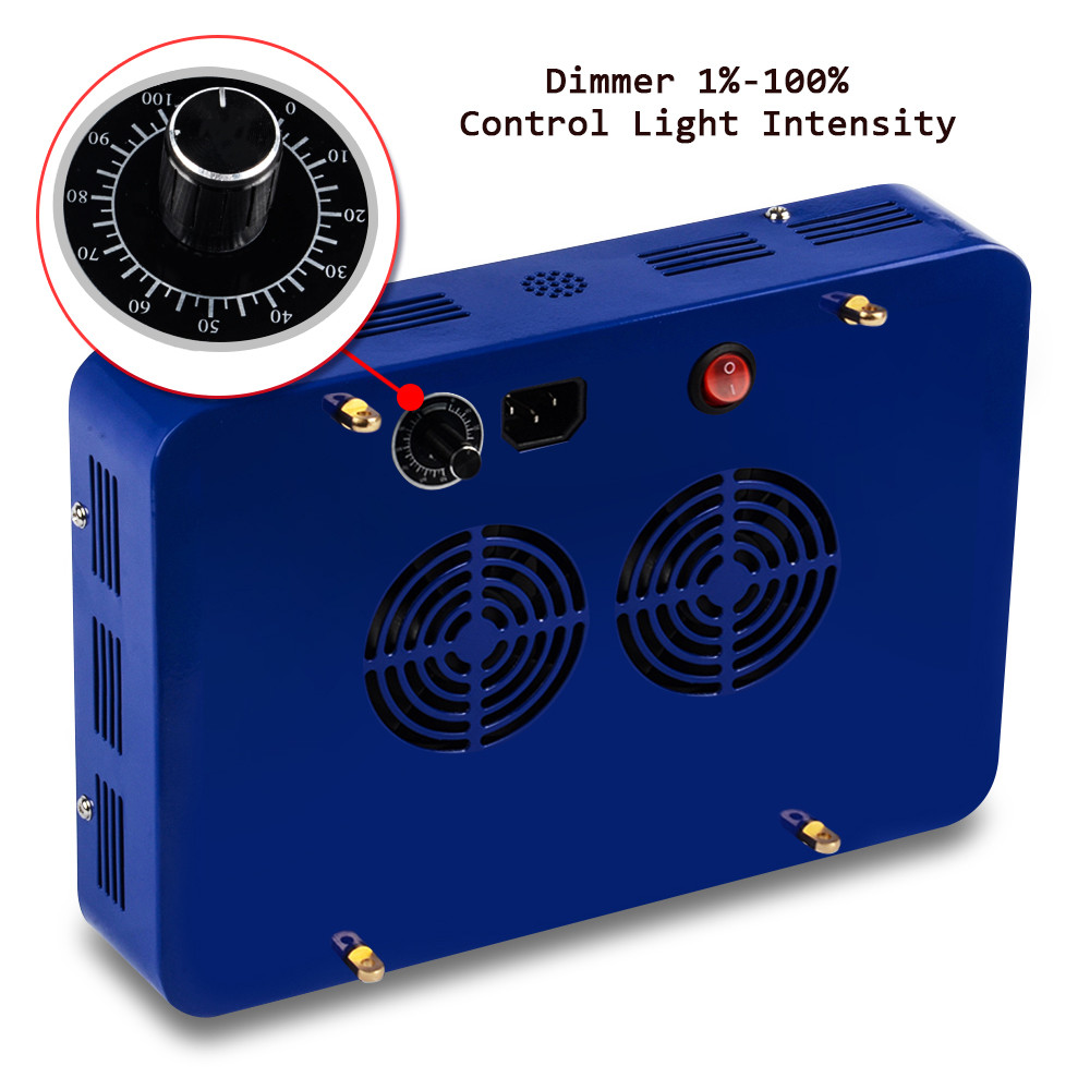 X4 X5 blue dimmer