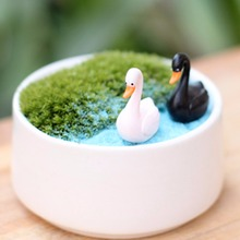 Micro Landscape World Countryside Swan Garden Ornaments Mini Two Swan Potted Home Garden Bonsai Micro Landscape DIY Bonsai Decor(China (Mainland))