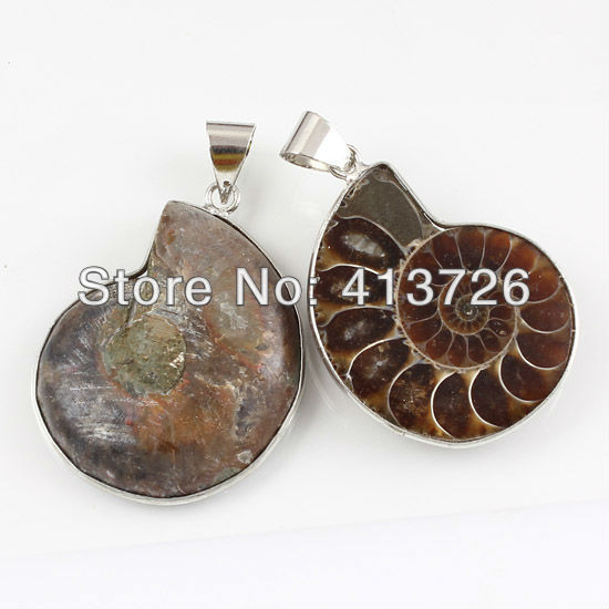 wholesale 10Pcs Charm Natural Ammonite Fossil Shell Pendant Beads Pendant Jewelry For Necklace(China (Mainland))