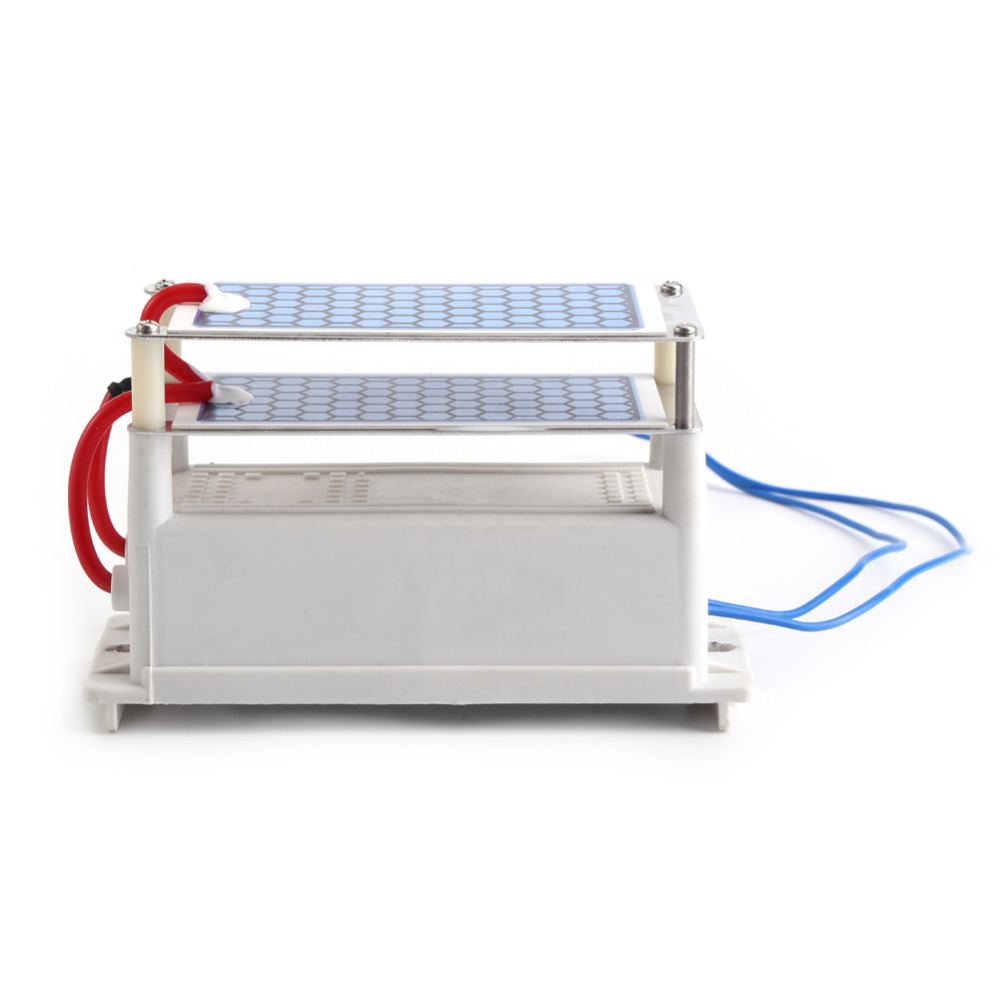 New Arrival AC 12V Ozone Generator 10g/h Double Ceramic Plate Ozonizer Air Sterilizer Used In Purifying air Wholesale(China (Mainland))