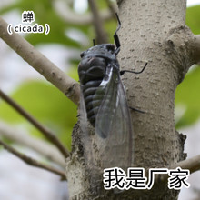 50pcs/ a lot Folk Art Clay Material Artificial Insect Model Crafts Handmade Solid Figure Cicada MM-016(China (Mainland))