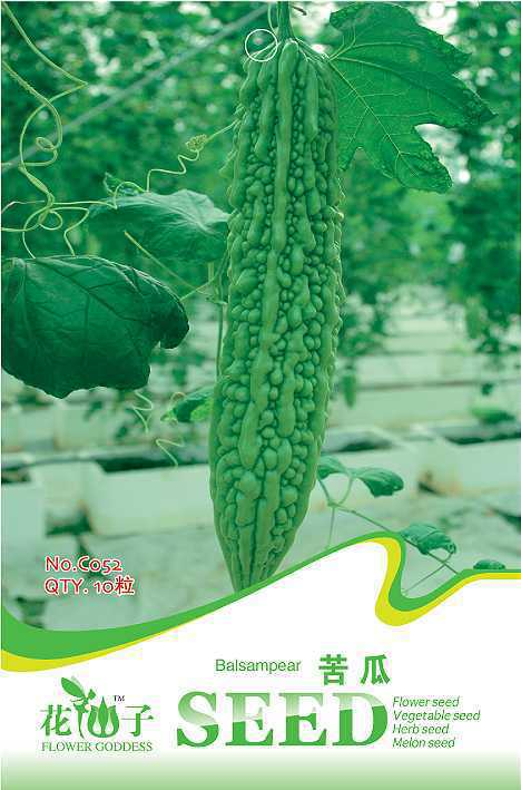 Free Shipping 3 Packs 30 Of Balsam Pear Seed, Organic Vegetable C052(China (Mainland))