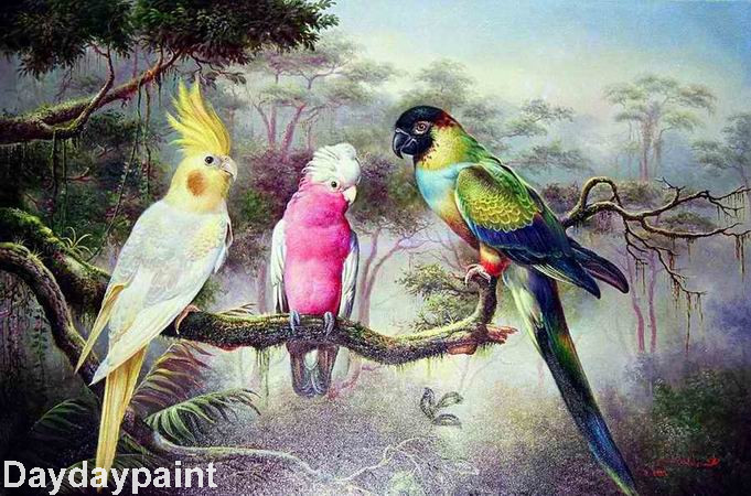 Hand Painted Wild Bird Oil Paintings Three Parrots Best