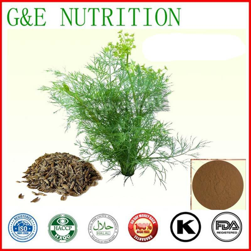 200g New Arrival Fennel Extract with free shipping <br><br>Aliexpress