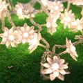 8M 50 LED Lotus Flower Blossom Garland Christmas String Lights Battery Operated Fairy Light for Wedding