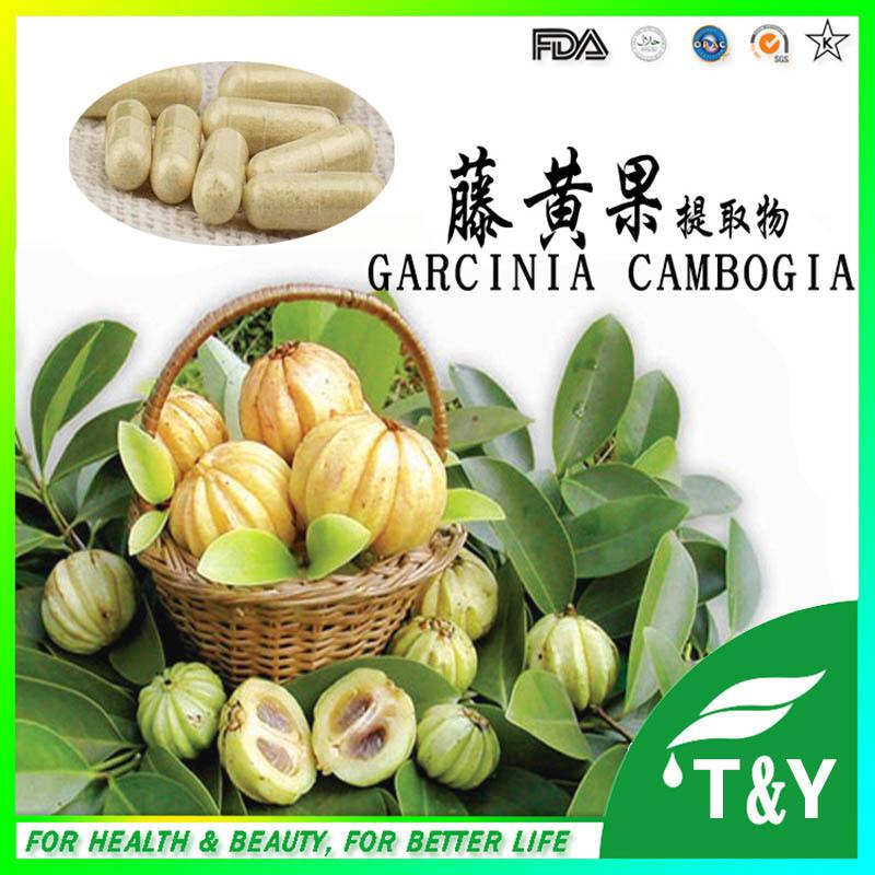Garcinia cambogia extract natural max slimming capsule weight loss capsules 500mg*500pcs(China (Mainland))