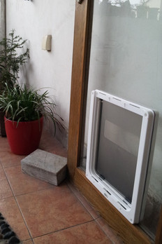 Hot sale dog door doghole special pet dog door openings large white queen free access openings(China (Mainland))