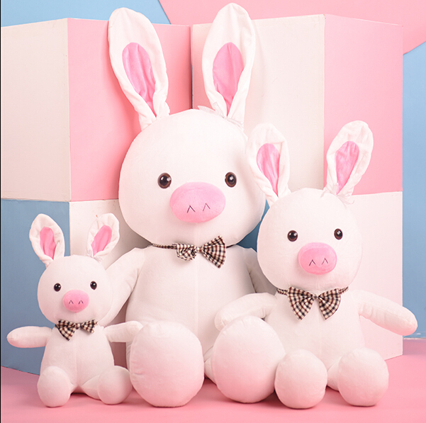 55cm  Factory direct sale &lt; turned out to be a handsome man &gt; pig rabbit plush toy doll doll to give gifts<br><br>Aliexpress