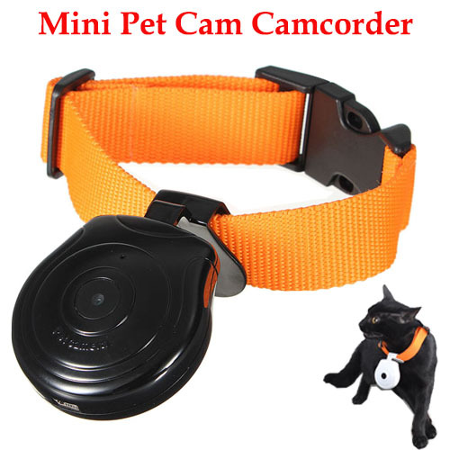Hot Mini Pet Camera Dog Camera Cat LCD Video Camcorder Pet Cam Recorder Finder Wireless Collar Pets Eye View Camera Pet Recorder(China (Mainland))