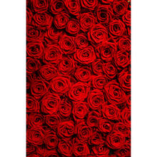 5x7ft valentine vinyl backdrop backgrounds for photo studio children shooting Computer Painted Backdrops Free shipping P0061