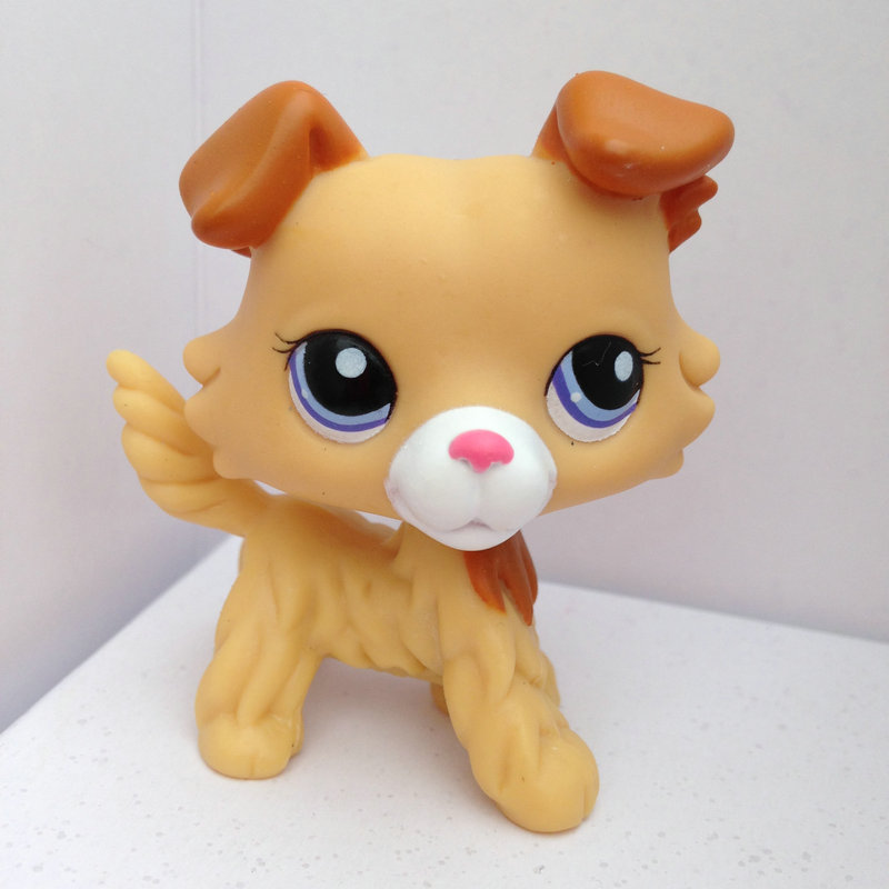 Pet Shop Animal Doll LPS Figure Child Toy Gril Collie Dog Without Magnet DWA374(China (Mainland))