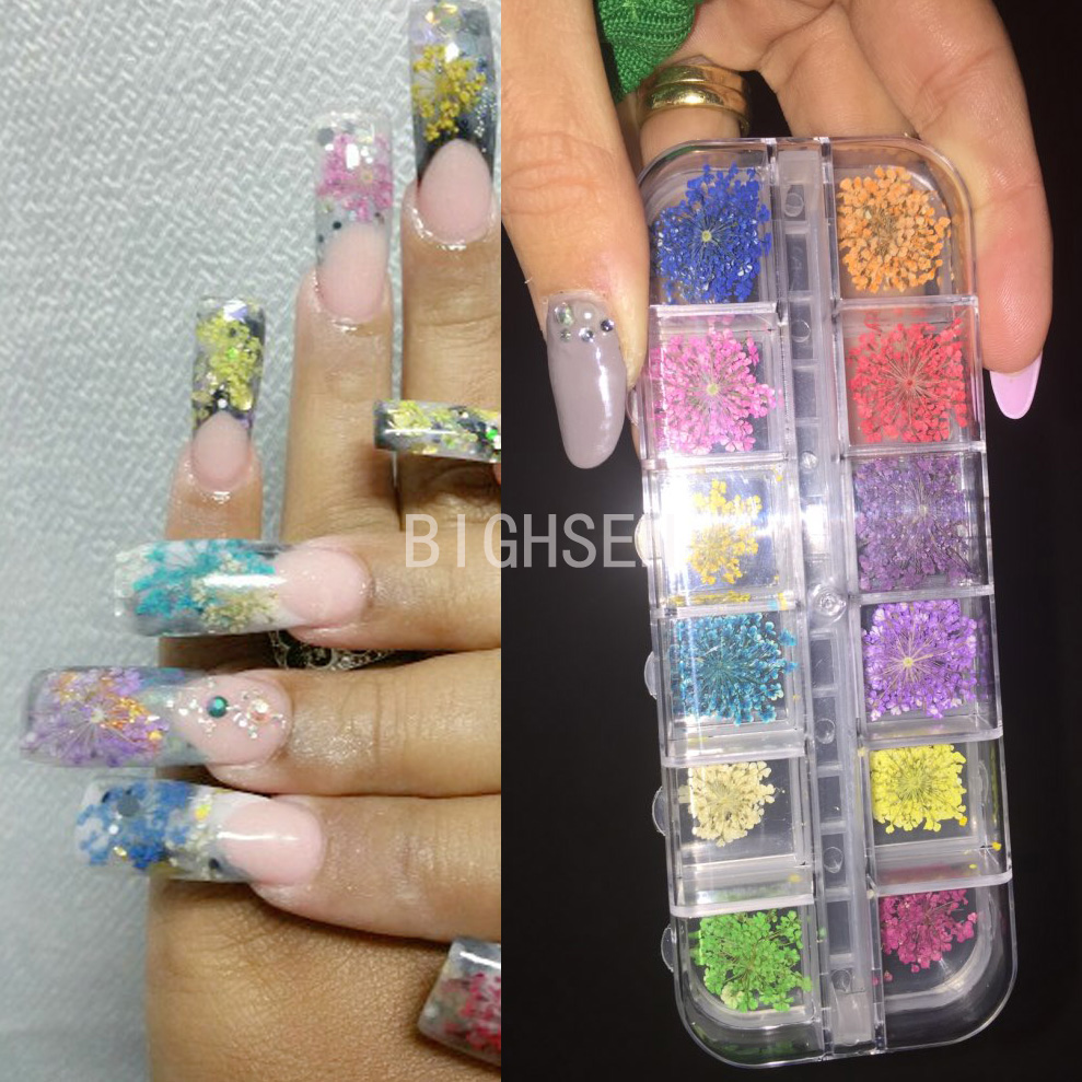 New 12 Colors Real Dried Flower Nail Art Decorations Diy Tips Small