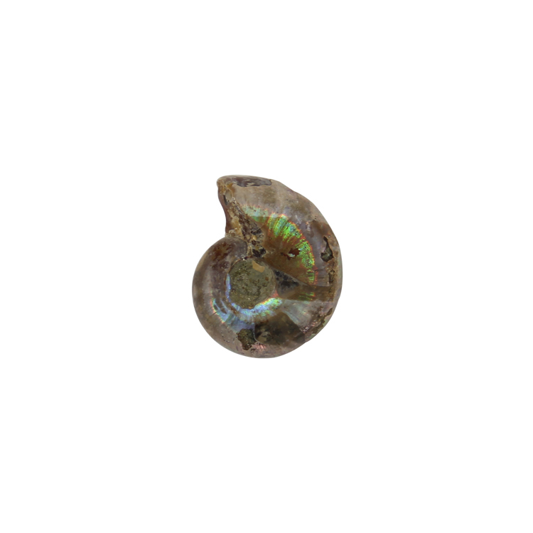 Wholesale 2015 Trendy Natural Stone Snail Shape Charms Pendants For Men/Women Jewelry Accessories(China (Mainland))
