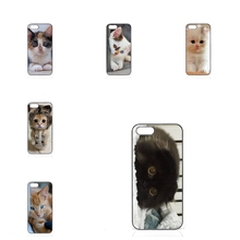 little kitten cute cat Lenovo A6000 A7000 A708T A2010 S850 K3 K4 K5 Note 1+ OnePlus Two X 3 Fashion Case Cover - jiu cases Store store