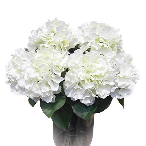 blanc hortensia fleurs achetez des lots petit prix blanc. Black Bedroom Furniture Sets. Home Design Ideas