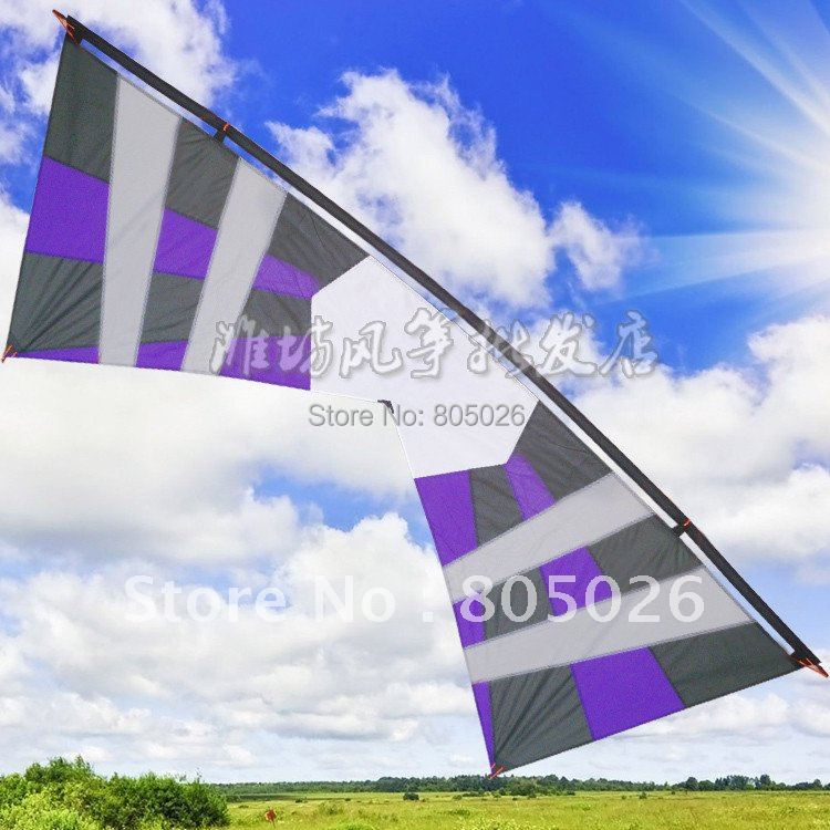 free shipping high quality 2.4m quad Line traction Stunt kite factory wei kite year of the snake fly rod hello kitty toys(China (Mainland))