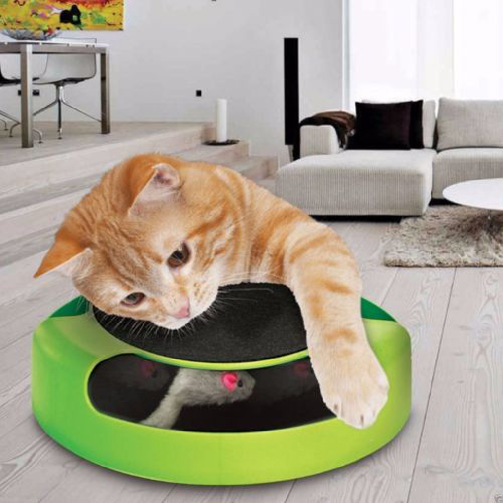 2016 new cat toy pets products kitten toys with moving for New home products 2016