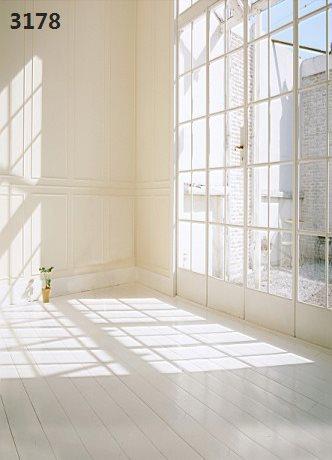 220CM * 150CM new2075 vinyl photography backdrops photo studio photographic background windows & sunshine