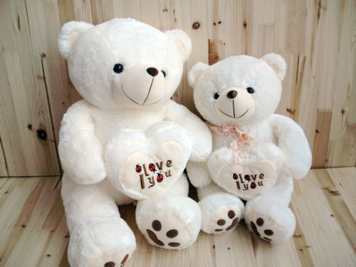 Free shipping plush toys hold Heart Bear Cute Teddy Bear love Bear doll cute doll doll birthday gift