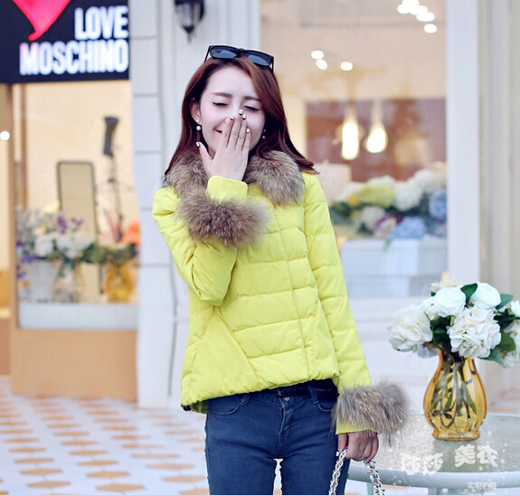 2014 New Fashion Ladies short design coat Winter jacket women winter outerwear 5 color clothes parka - Li Mrs's store