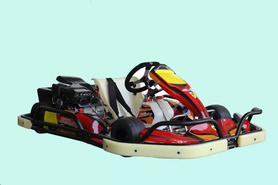 168cc cheap go kart for sale(168GK-05)(China (Mainland))