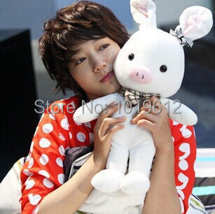 20cm Factory direct sale < turned out to be a handsome man > pig rabbit plush toy doll doll to give gifts(China (Mainland))