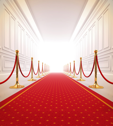 150*200cm(5ft*6.5ft) photography backdrops photo studio props baby Wedding background red carpet gallery(China (Mainland))