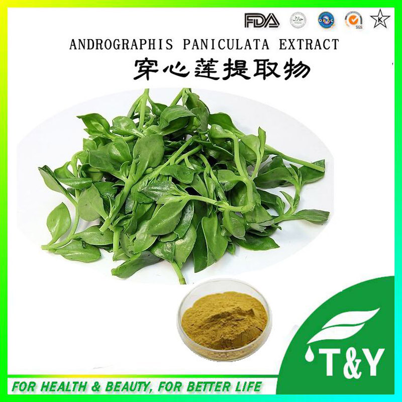 Andrographis Paniculata Herbal Extract /Kariyt extract 700g/lot