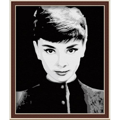 """Audrey Hepburn"" Kit acrylic painting DIY digital oil painting by numbers framed on canvas Home Decor Wall displays pictures(China (Mainland))"
