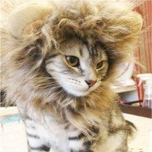2015 date de haute qualité Lion Mane Cat chapeau de chat de jouet comme Lion Mane Hat peluche peluche Lion Mane Hat pour chats LA672609(China (Mainland))