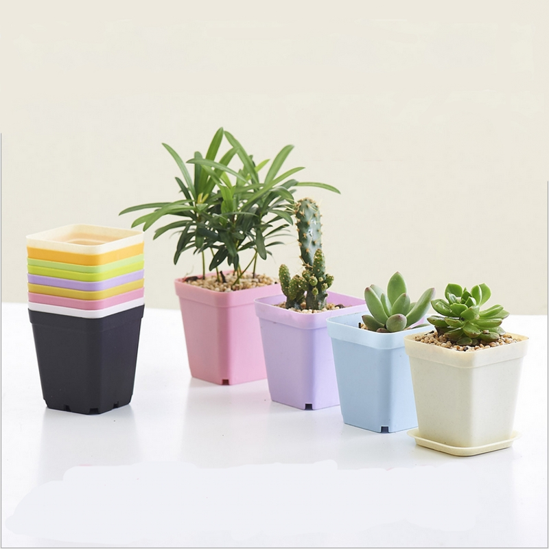 Creative Home Gardening Wholesale Flower Pots Mini