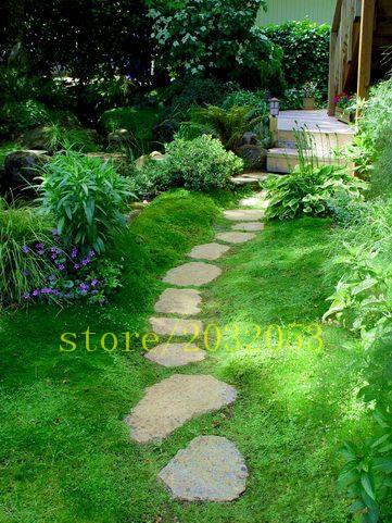 couvre sol plantes achetez des lots petit prix couvre sol plantes en provenance de. Black Bedroom Furniture Sets. Home Design Ideas