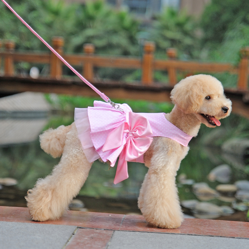 Pet Leash Rope 2016 New Style Big Bow Dog Dress Type Small Harness Vest ZL96 - PICO DEPT STORE store
