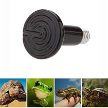 Black Frog lizard Guiyi lamp Reptiles heater Winter Animal necessary Ceramic lamp Amphibian special / 25W50W75W100W150W200W(China (Mainland))