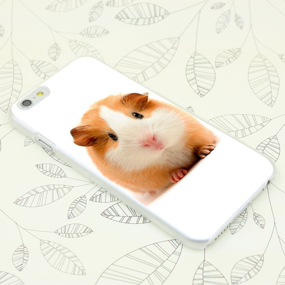 463F hamster and guinea pig Hard Transparent Case Cover for iPhone 7 7 Plus 4 4s 5 5s 5c SE 6 6s Plus