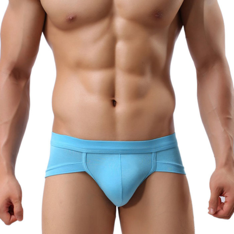 70116 Amazing New Men Sexy Underwear Men s Briefs Soft Underpants 5Colors Free Shipping